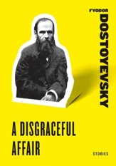 A Disgraceful Affair - eBook