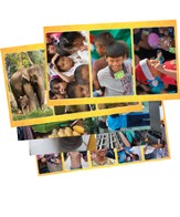 Thailand Trek VBS 2015: Experience Thailand Decorating & Resource Poster Pack, Set of 5/20 images total)