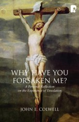 Why Have you Forsaken Me?: A Personal Reflection on the Experience of Desolation - eBook
