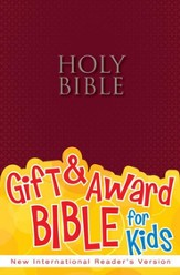 NIrV Gift & Award Bible, Burgundy Softcover
