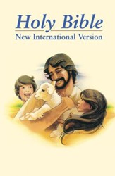 NIV Children's Bible - Slightly Imperfect