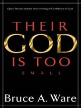 Their God Is Too Small: Open Theism and the Undermining of Confidence in God - eBook