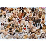 Dogs Galore!, 1000 Piece Puzzle  - Slightly Imperfect