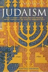 A Brief Guide to Judaism: Theology, History and Practice / Digital original - eBook