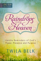 Raindrops from Heaven: Gentle Reminders of God's Power, Presence and Purpose - eBook
