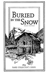 Buried in the Snow - Slightly Imperfect