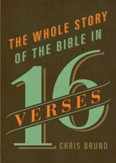 The Whole Story of the Bible in 16 Verses - eBook