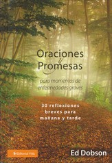Oraciones y Promesas para Momentos de Enfermedades Graves  (Prayers and Promises When Facing a Life-Threatening Illness)