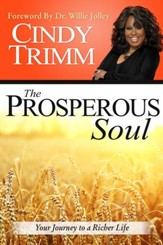The Prosperous Soul: Your Journey to a Richer Life - eBook