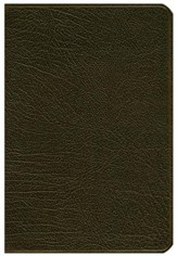 NLT Pitt Minion Reference Bible, Goatskin leather, brown