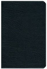 NLT Pitt Minion Reference Bible--French morocco leather, black