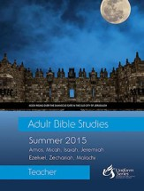 Adult Bible Studies Summer 2015 Teacher - eBook