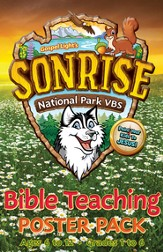 Bible Teaching Posters, pack of 10