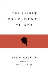 The Secret Providence of God - eBook