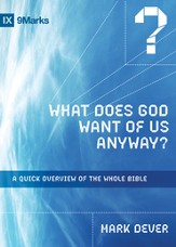 What Does God Want of Us Anyway?: A Quick Overview of the Whole Bible - eBook