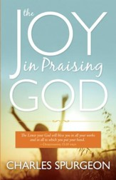 The Joy in Praising God - eBook