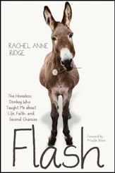 Flash: The Homeless Donkey Who Taught Me about Life, Faith, and Second Chances - eBook