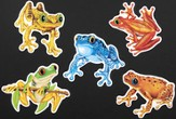 Frog Cutouts, pack of 10
