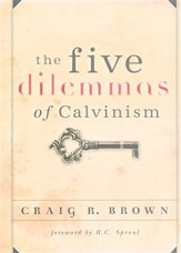 The Five Dilemmas of Calvinism  - Slightly Imperfect