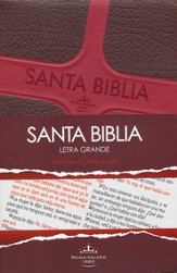 Biblia RVR 1960 Letra Grande con Palabras de Cristo en Rojo  (RVR 1960 Large Print Jesus' Words in Red Bible)