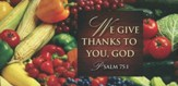 We Give Thanks Thanksgiving Offering Envelope (Package of 50)