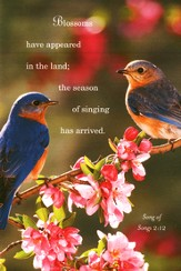 Birds Spring Bulletins (Package of 50)