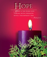 Advent Purple Sunday 1 Hope Bulletin 2014, Large (Package of 50)