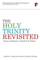 The Holy Trinity Revisited: Essays in Response to Stephen Holmes - eBook