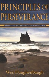 Principles of Perseverance: What To Do Instead of Giving Up