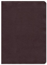 NKJV Scofield Study Bible III, Largeprint, Bonded  Leather, Thumb Indexed, Burgundy