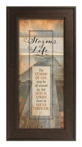 Storms Of Life Framed Art