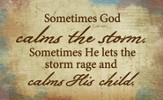 Sometimes God Calms The Storm Magnet