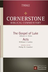 Luke, Acts - eBook