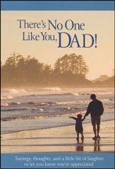 There's No One Like a Dad Book