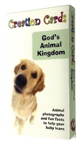 Creation Cards: God's Animal Kingdom