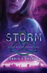 Storm (Stone Braide Chronicles Book #3): A Novel - eBook