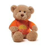 Get Well Soon T-Shirt Teddy Bear