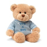 It's a Boy T-Shirt Bear