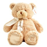 My First Teddy in Brown