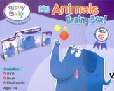 My Animals: Brainy Box!