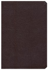 Comparative Study Bible, Revised, Burgundy Bonded Leather (NIV, Amplified, KJV & NASB Update)