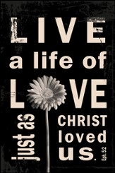 Live A Life of Love Mounted Print