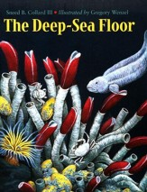 Deep Sea Floor