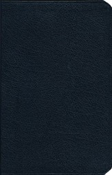 The Amplified Bible, Bonded leather, Navy