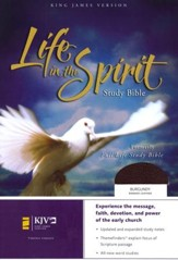 KJV Life in the Spirit Study Bible, Bonded Leather, Burgundy,  Thumb-Indexed (Previously titled The Full Life Study Bible)