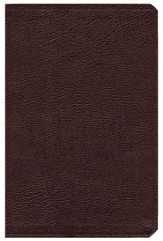 NIV (1984) Life Application Study Bible, Revised--bonded leather, burgundy - Imperfectly Imprinted Bibles