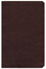 NIV (1984) Life Application Study Bible, Revised--bonded leather, burgundy, Case of 12