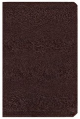 NIV Life Application Study Bible, Revised, Bonded leather, burgundy - Slightly Imperfect
