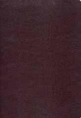 NIV (1984) Study Bible-bonded leather, burgundy