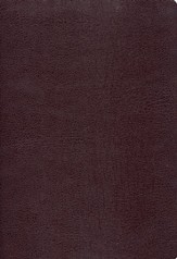 Zondervan NIV (1984) Study Bible--bonded leather, burgundy, Case of 12